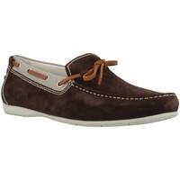 Zapatos Hombre Zapatos náuticos Stonefly SUNNY 5 Marron