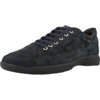 Zapatos Hombre Zapatillas bajas Stonefly SEASON II Azul