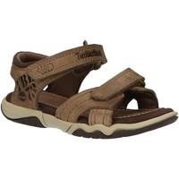 Zapatos Niños Sandalias Timberland 2180A OAK Beige