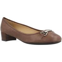 Zapatos Mujer Bailarinas-manoletinas Geox D CAREY B Marron