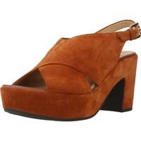 Zapatos Mujer Sandalias Geox D ZAFERLY B Marron