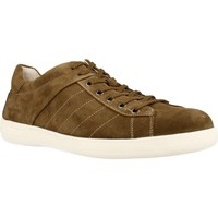 Zapatos Hombre Zapatillas bajas Stonefly OSCAR 1 Marron
