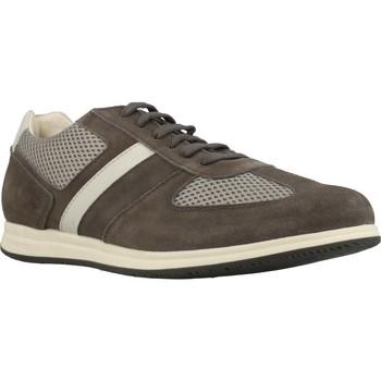 Zapatos Hombre Zapatillas bajas Stonefly WALKY 4 Marron