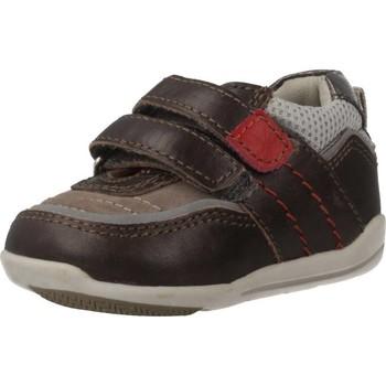 Zapatos Niño Zapatillas bajas Chicco G12.0 Marron