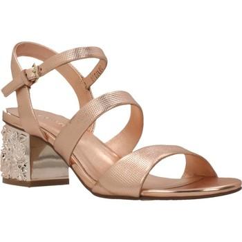 Zapatos Mujer Sandalias Elvio Zanon H5201P Marron