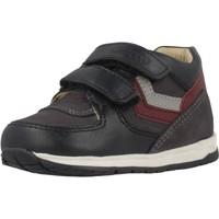 Zapatos Niño Zapatillas altas Chicco 1060457 Azul
