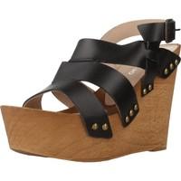 Zapatos Mujer Sandalias Antonio Miro 316706 Negro