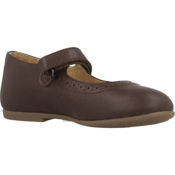 Zapatos Niña Derbie & Richelieu Chicco CASTY Marron