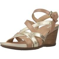 Zapatos Mujer Sandalias Geox D DOROTHA Marron