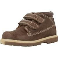 Zapatos Niño Botas de caña baja Chicco CARDAX Marron