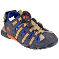 Zapatos Niños Sandalias Lumberjack  Azul