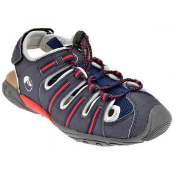 Zapatos Niños Sandalias Lumberjack  Gris