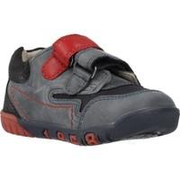 Zapatos Niño Zapatillas bajas Chicco 1060451 Azul