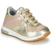 Zapatos Niña Zapatillas bajas GBB LELIA Beige / Oro