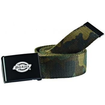 Accesorios textil Hombre Cinturones Dickies Orcutt  webbing belt Verde