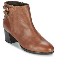 Zapatos Mujer Botines Geox ERIKAH B Marrón