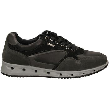 Zapatos Hombre Zapatillas bajas Igi&co ULSGT 21389 grisc-grigio-scuro