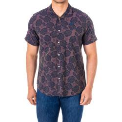textil Hombre camisas manga corta La Martina Camisa M/Corta Violeta
