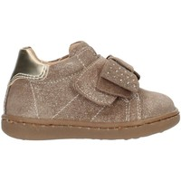 Zapatos Niños Zapatillas bajas Nero Giardini A918000F beige