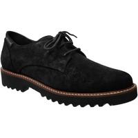 Zapatos Mujer Derbie Mephisto SABATINA Terciopelo negro