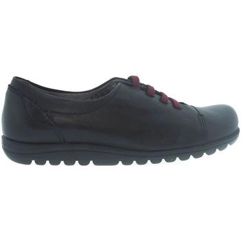 Zapatos Mujer Richelieu Fluchos Zapatos  8876 Negro Negro