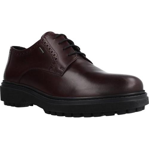 Zapatos Mujer Derbie Geox D ASHEELY NP ABX Marron