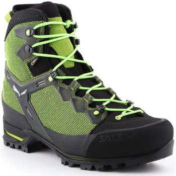 Zapatos Hombre Senderismo Salewa Trekking shoes  Ms Raven 3 GTX 361343-0456 green