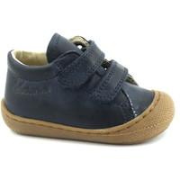 Zapatos Niños Pantuflas para bebé Naturino NAT-CCC-12904-B Blu
