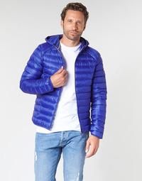 textil Hombre plumas JOTT NICO Azul