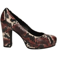 Zapatos Mujer Zapatos de tacón Les Venues PATAGONIA barolo