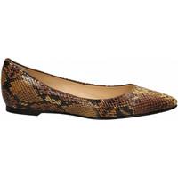Zapatos Mujer Bailarinas-manoletinas L'arianna SERPENTE senape
