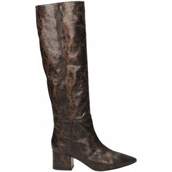 Zapatos Mujer Botas urbanas Giampaolo Viozzi TANZANIA marrone