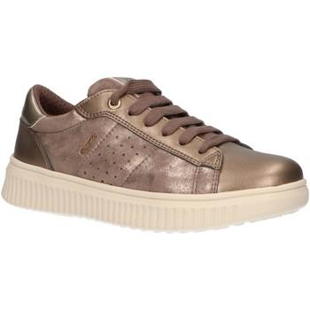 Zapatos Niña Zapatillas bajas Geox J947YF 0MANF J DISCOMIX Beige