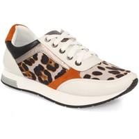 Zapatos Mujer Zapatillas bajas Kylie K1940004 Leopardo