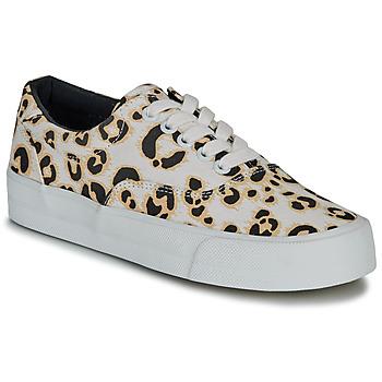 Zapatos Mujer Zapatillas bajas Superdry CLASSIC LACE UP TRAINER Leopardo