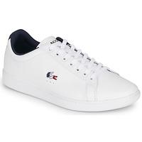 Zapatos Hombre Zapatillas bajas Lacoste CARNABY EVO TRI1 SMA Blanco