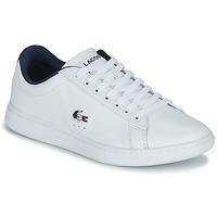Zapatos Mujer Zapatillas bajas Lacoste CARNABY EVO TRI 1 SFA Blanco / Marino / Rojo