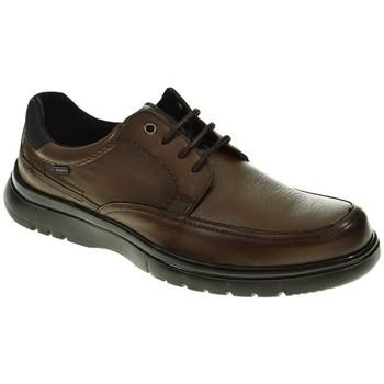 Zapatos Hombre Derbie Baerchi CORDON/BLUCHER  MARRON Marrón
