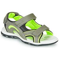 Zapatos Niño Sandalias de deporte Chicco CEDDER Gris / Verde