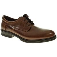 Zapatos Hombre Derbie Luisetti 30200 Marrón