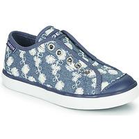 Zapatos Niña Zapatillas bajas Geox JR CIAK GIRL Azul / Blanco
