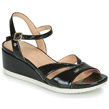 Zapatos Mujer Sandalias Geox D ISCHIA Negro