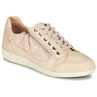 Zapatos Mujer Zapatillas bajas Geox D MYRIA Nude / Beige