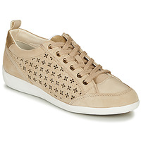 Zapatos Mujer Zapatillas bajas Geox D MYRIA Beige