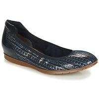 Zapatos Mujer Bailarinas-manoletinas Tamaris JOYA Marino / Plata