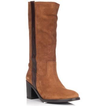 Zapatos Mujer Botas urbanas Zapp 9053 CUERO