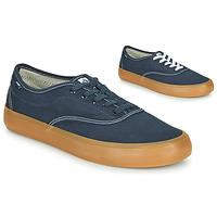 Zapatos Hombre Zapatillas bajas Element PASSIPH Azul