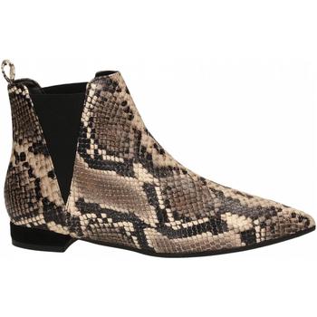 Zapatos Mujer Low boots Andrea Zali DIAMANT roccia