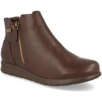 Zapatos Mujer Botines Clowse 9B1067 Marron