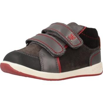 Zapatos Niño Zapatillas bajas Garvalin 191312 Gris